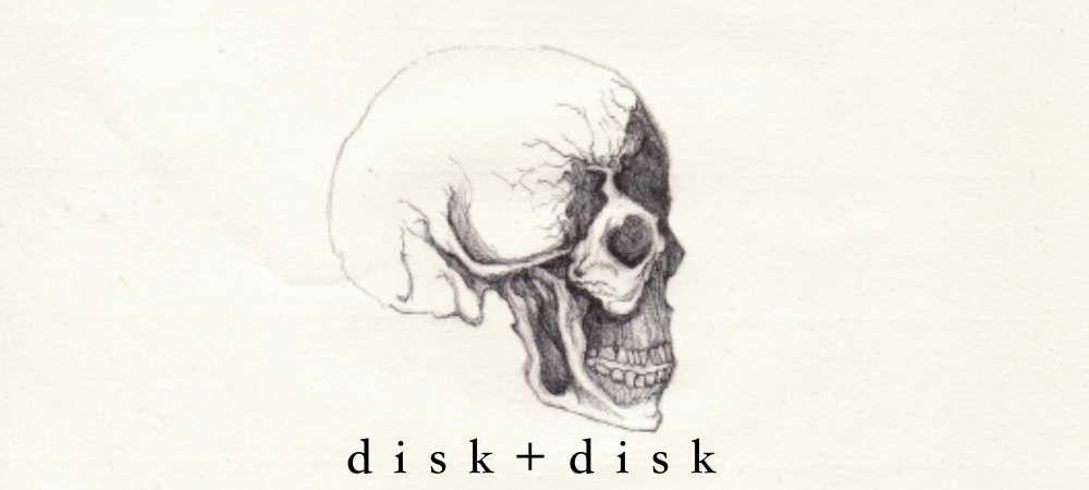 diskdisk1
