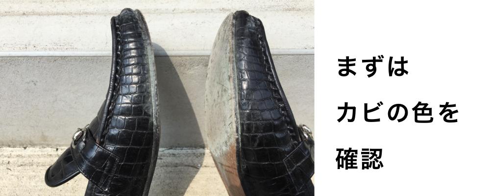 靴にカビが発生した場合の対処方法2