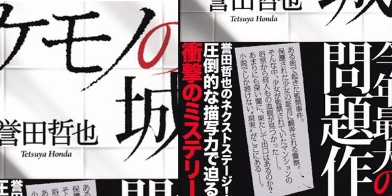 books-kemono