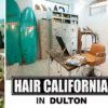 株式会社ダルトン - DULTON CO., LTD.TOP